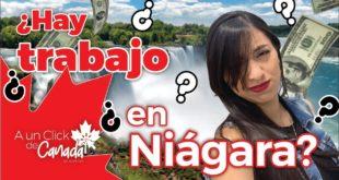 Hay TRABAJO en Niágara, Ontario? (Migrar a ciudades medianas de Canadá) 🇨🇦